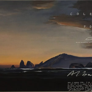 Albatross VII