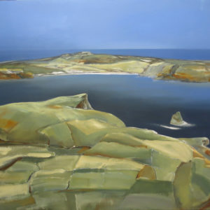 NZ Art The Chathams 1 by Sue Collins