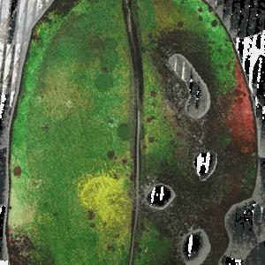 Pohutukawa Leaf - Small - Green 1st