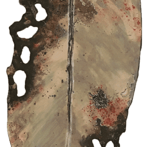 NZ Art Pohutukawa Leaf - XL - Beige 1