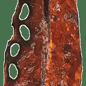 NZ ArtPohutukawa - Medium - R8