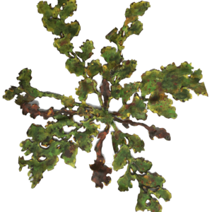 NZ ArtTanekaha XL Green 2 by Liz McAuliffe