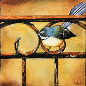 Fantail-on-Fence