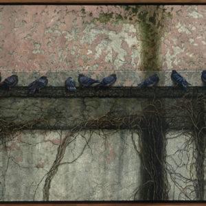 Pigeon-Wall