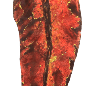 Archetypal-Leaf-Red-17515